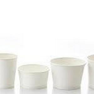 Pote biodegradável SP
